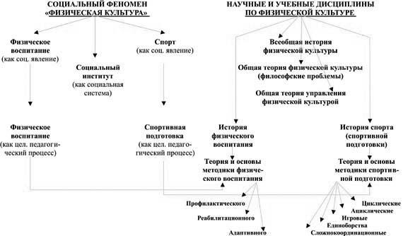 Социальное значение физической культуры Реферат ru Социальные проблемы физической культуры реферат